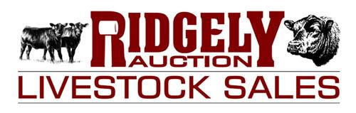 Ridgely Auction Livestok Sales