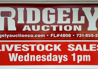 Wednesday 1:00 pm Livestock Auctions – Goats & Cattle