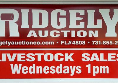 Wednesday 1:00 pm Livestock Sales