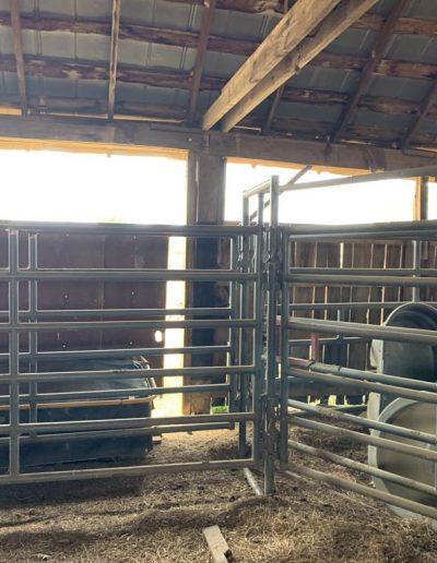gates-fencing3